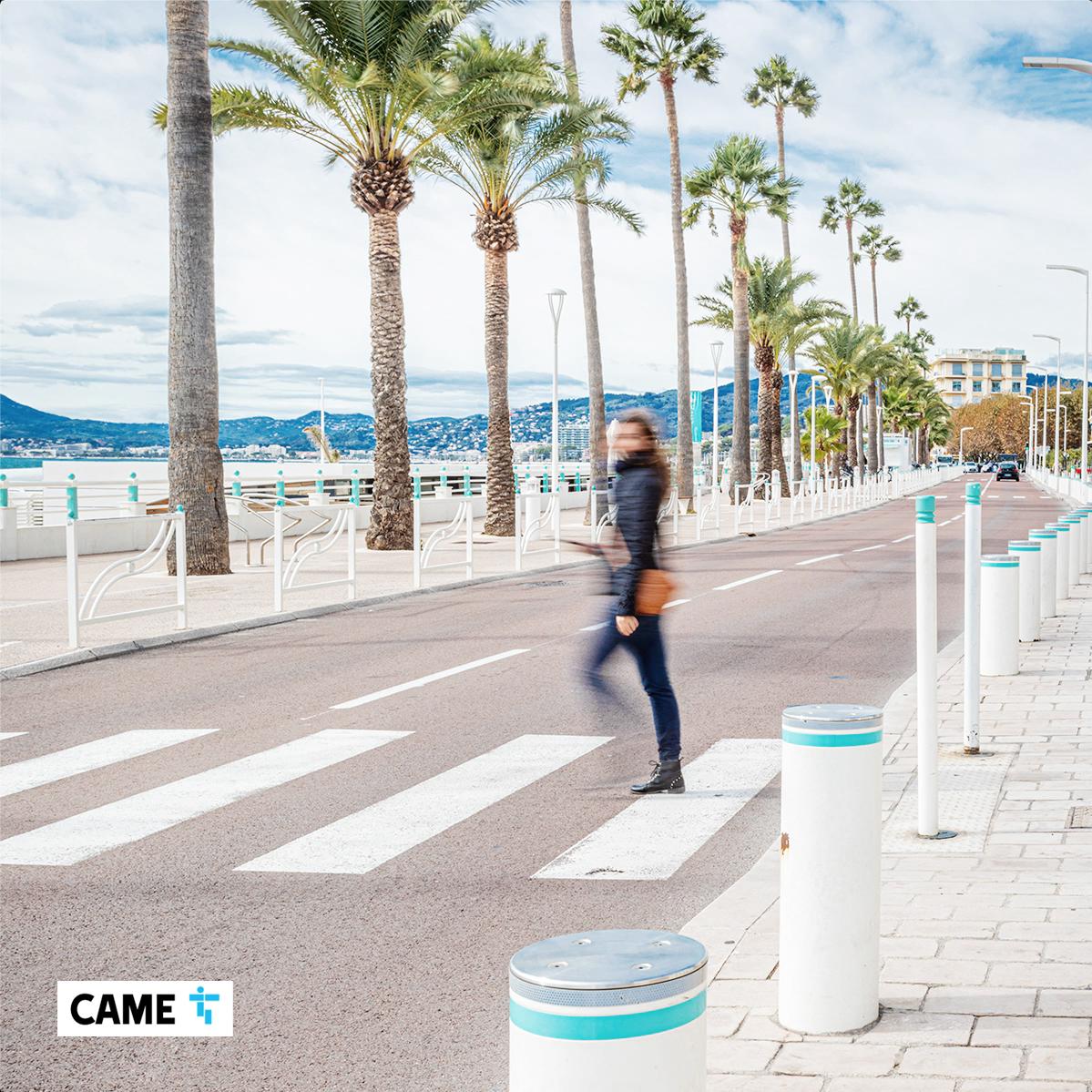 Cannes Case Study